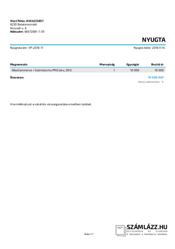 e-nyugta-2